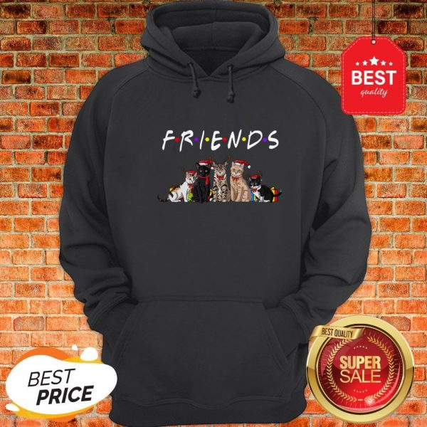 Official Christmas Best Friends Cat Hoodie