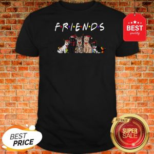 Official Christmas Best Friends Cat Shirt