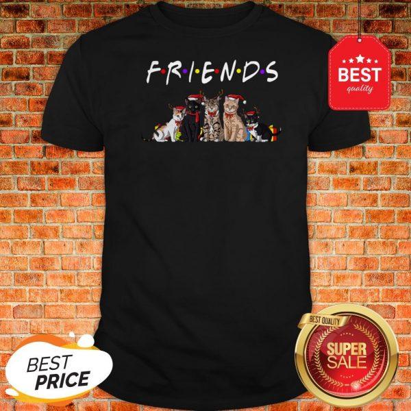 Official Christmas Best Friends Cat Shirt