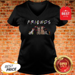 Official Christmas Best Friends Cat V-neck