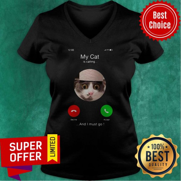 Top My Cat Is Calling And I Must Go V-neck