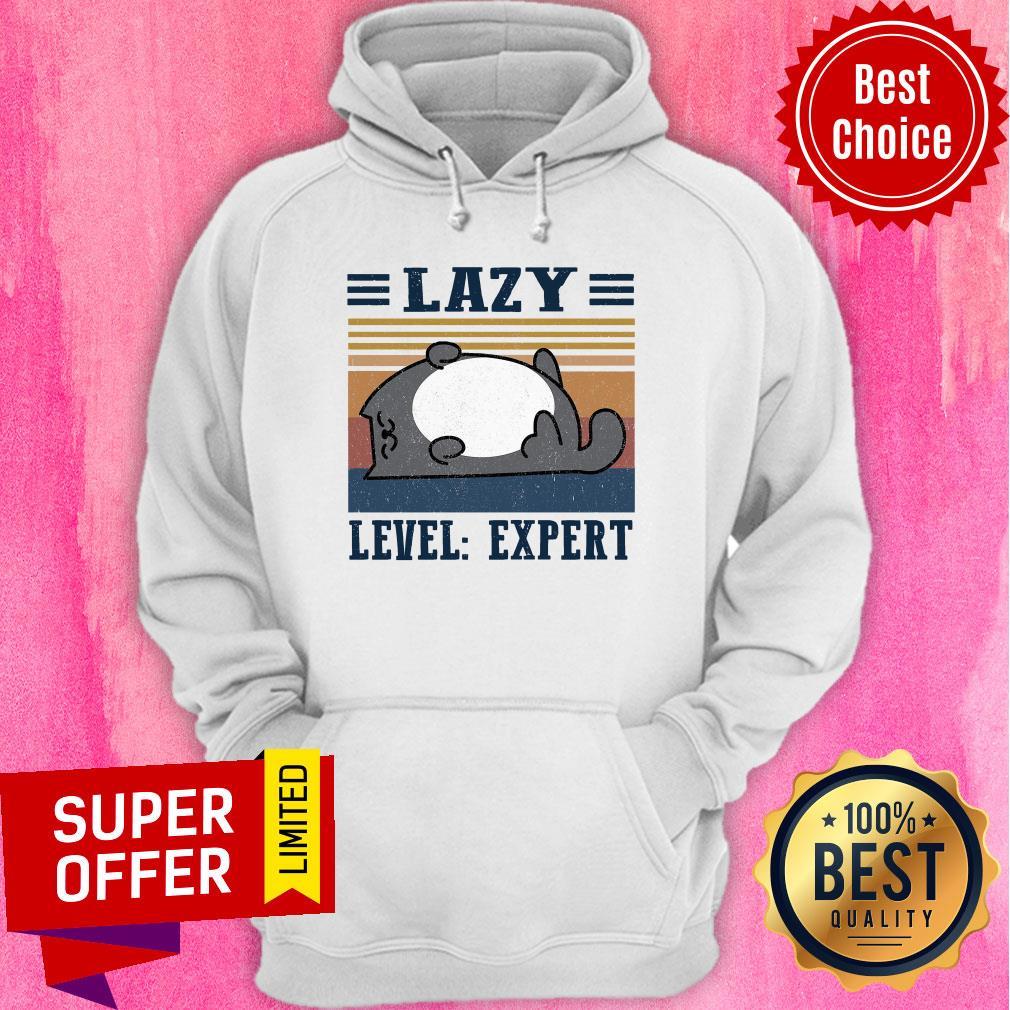 Premium Lazy Level Expert Vintage Hoodie
