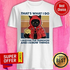 Funny That's What I Do I Master The Dungeon And I Know Things Shirt