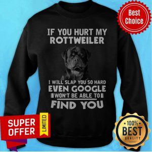 If You Hurt My Rottweiler I Will Slap You So Hard Even Google Wont Be Able To Sweatshirt