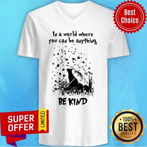 Awesome In A World Where You Can Be Anything Be Kind V-neck