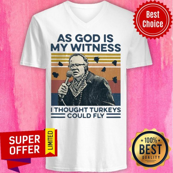 Funny As God Is My Witness I Thought Turkeys Could Fly Vintage V-neck