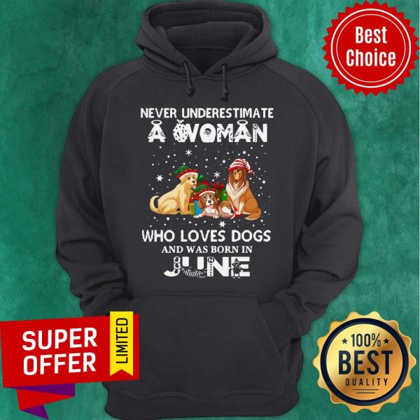 Never Understimate A Woman Who Loves Dogs And Was Born In June Hoodie