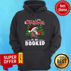 Awesome Owl My Christmas Is All Booked Hoodie