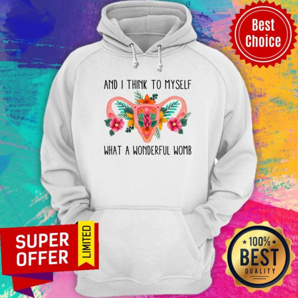 And I Think To Myself What A Wonderful Womb Hoodie