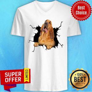Dog I Love Bloodhound V-neck