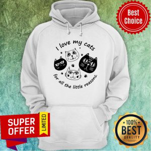Funny I Love My Cats For All The Little Reasons Hoodie