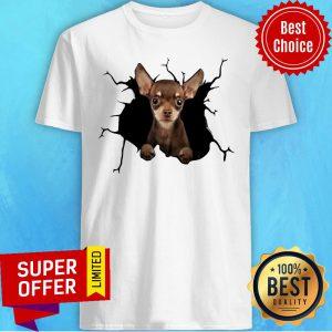 Nice I Love Chihuahua Shirt