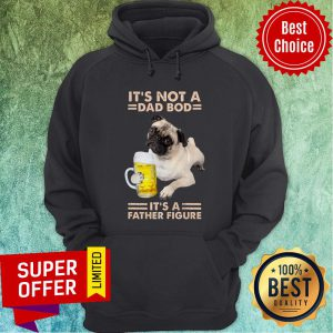 Pitbull It's Not A Dad Bod Dog It's A Father Figure Hoodie