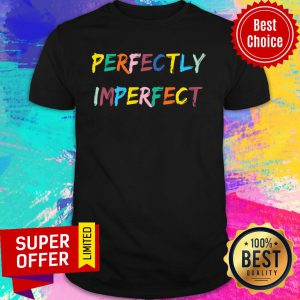 Awesome Perfectly Imperfect LGBT Shirt